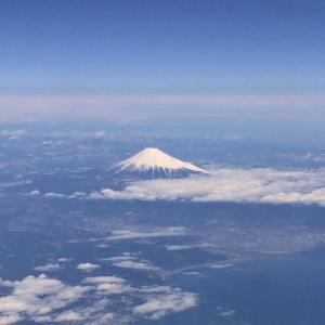 日本へ一時避難中