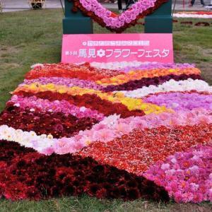 美しきダリアの花、奈良県営馬見丘陵公園のダリア園