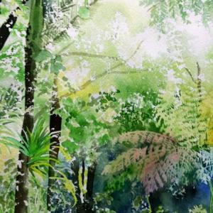 ワイタケレ森林公園