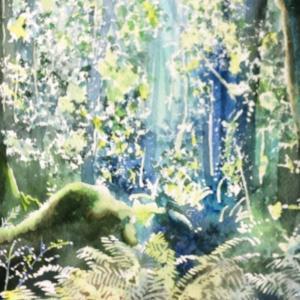 レイクガンの原生林