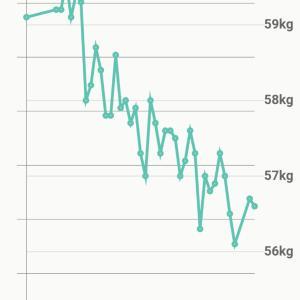 59歳・お酒を毎日飲んで1ヶ月10日でマイナス3kg!