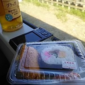 俺の鉄旅2020on偽最長片道切符 8:高崎→桜咲く八高線→中央特急→甲府