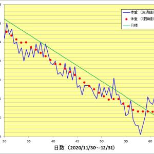 心機一転 2カ月目(2020年12月)のグラフ