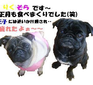 2010年のはじまりだよぉ~(*^-^*)ノ
