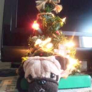 りくそら クリスマスイブだよ( ^-^ )ノ
