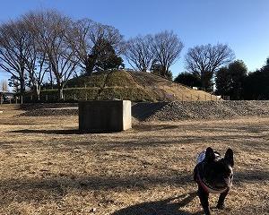 日常(玉川野毛町公園)