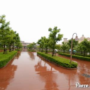 2014年の雨の日のパーク散歩