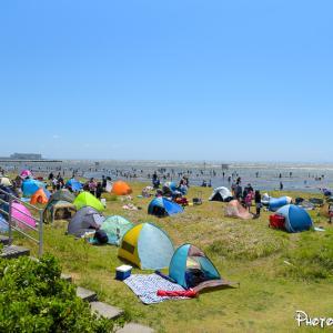 暴風のふなばし三番瀬海浜公園