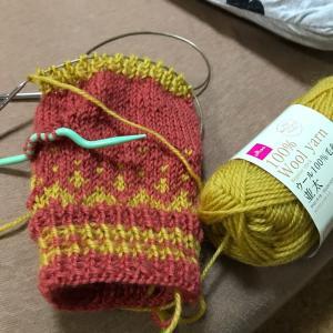 今日は編み物