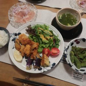 """牡蠣フライの晩ご飯 と ヘルマンリクガメ""""ケメちゃん""""の体重♪"""