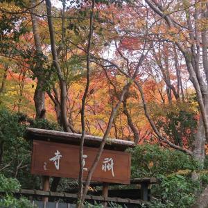 """京都の""""紅葉狩り""""「そうだ。京都行こう」1日目 その2♪"""
