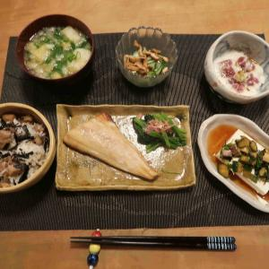 """鶏ごぼう飯&とろほっけの晩ご飯と 自由なヘルマンリクガメ""""ケメちゃん""""♪"""