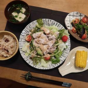 タコ飯と豚しゃぶサラダの晩ご飯 と ナンキンハゼ・メトロキャンドルの花♪