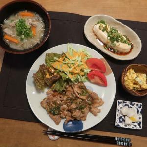 豚肉のネギ味噌焼きと豚汁の晩ご飯 と 赤とんぼ&イトトンボ♪