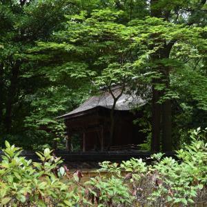 【日本最古】神谷神社を訪れました。