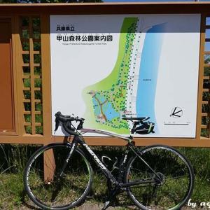 ポタしてハイク … 甲山界隈