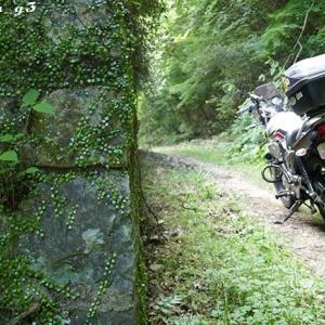 ちょい林道ツー … その1
