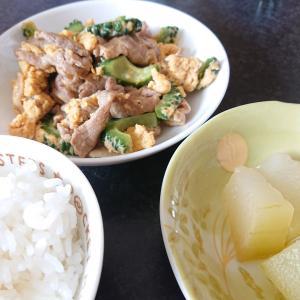 ゴーヤチャンプルーと冬瓜の煮物