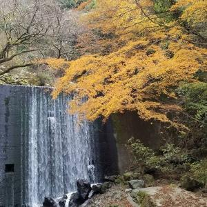 ◆ 30年ぶりの伊豆長岡温泉へ、その13 「ゴジラ岩?!」へ(2019年12月)