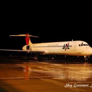 ◆ 飛行機シリーズ再編集編、その3「眠る飛行機たち@北九州空港」(2007年9月)