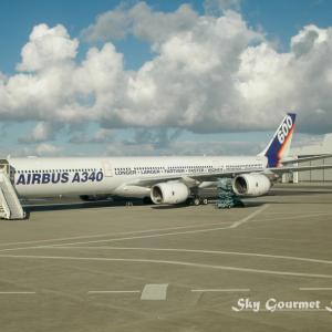 ◆ 飛行機シリーズ再編集編、その5「エアバスの故郷 トゥールーズ」へ(2004年10月)