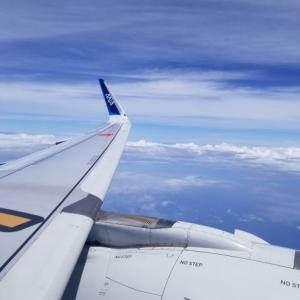 ◆ 恒例の沖縄 2020、その2「新滑走路に着陸した日@沖縄那覇」(2020年6月)