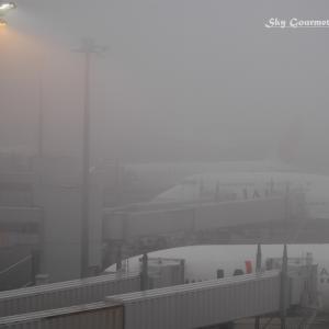 ◆ 「霧がかかった日」@羽田(2004年11月)