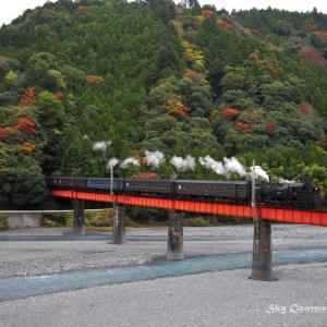 ◆ 「大井川鐡道」(2009年11月)