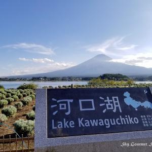 ◆ 「富士山」を見にドライブに行った日、その3【河口湖・大石公園花街道】へ(2020年9月)