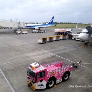 ◆ 「南の島」その3、12年振りの【宮古空港】へ(2020年12月)