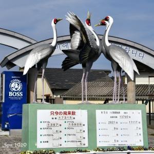 ◆ 薩摩を巡る、その14「出水市ツル観察センター」へ(2020年12月)