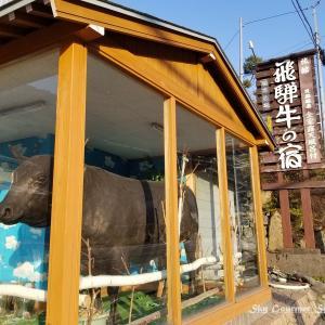 ◆ 車旅で宝塚、その2「奥飛騨温泉 飛騨牛の宿」へ 到着編(2021年3月)