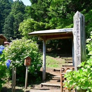 ◆ 「伊豆高原花しょうぶ園」に行った日(2021年6月)
