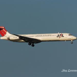 ◆ もう会えない飛行機たち、その61 「名前を間違えられたら」(2005年3月)