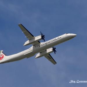 ◆ 「カーゴ・コンビ型」が飛んだ日(2021年7月)