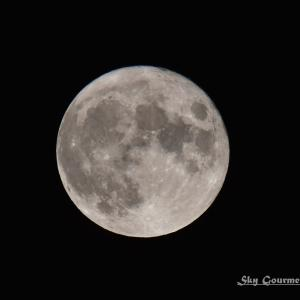 ◆ 「Buck Moon」(2021年7月)