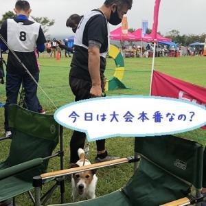 エクストリーム2020 開幕朝霧 ~え?小太郎君トップバッター?~