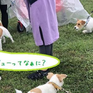 エクストリーム2020 朝霧 ~ドラマいっぱい~
