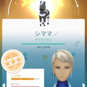 ポケモンGO 攻略日記471~シママのキラポケモン~。