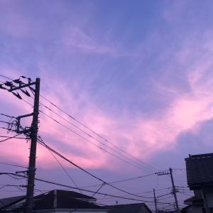 今日は鳳凰みたいな雲