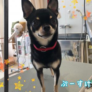 ♡10月5日(土)~6日(日)のお客様♡