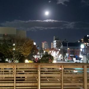 ☆ホテルのお客様 11月12日(火)~11月14日(木)☆