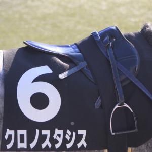 愛馬の写真;クロノスタシス(2019年11月16日東京)
