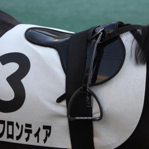 愛馬の写真;トゥザフロンティア(2019年11月17日東京)