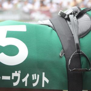 愛馬の写真;グルーヴィット(2019年7月21日中京、中京記念)