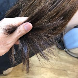ビビリ毛のその後