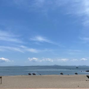 三浦海岸生き埋め事件