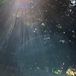 壱岐島③ 爾自神社と東風石