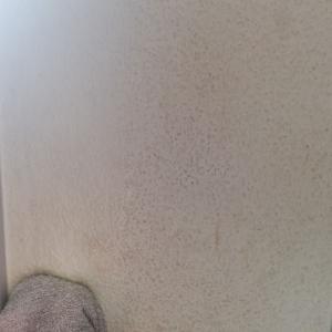 《達成感があって疲れないのに部屋がキレイになる壁紙掃除》