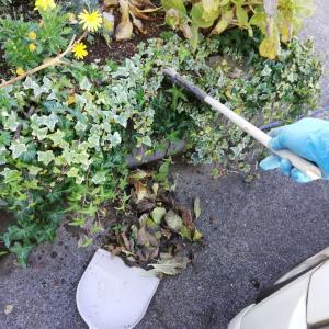 《ニオイ・カビ・虫の対策してる?大掃除で絶対はずせない3か所》